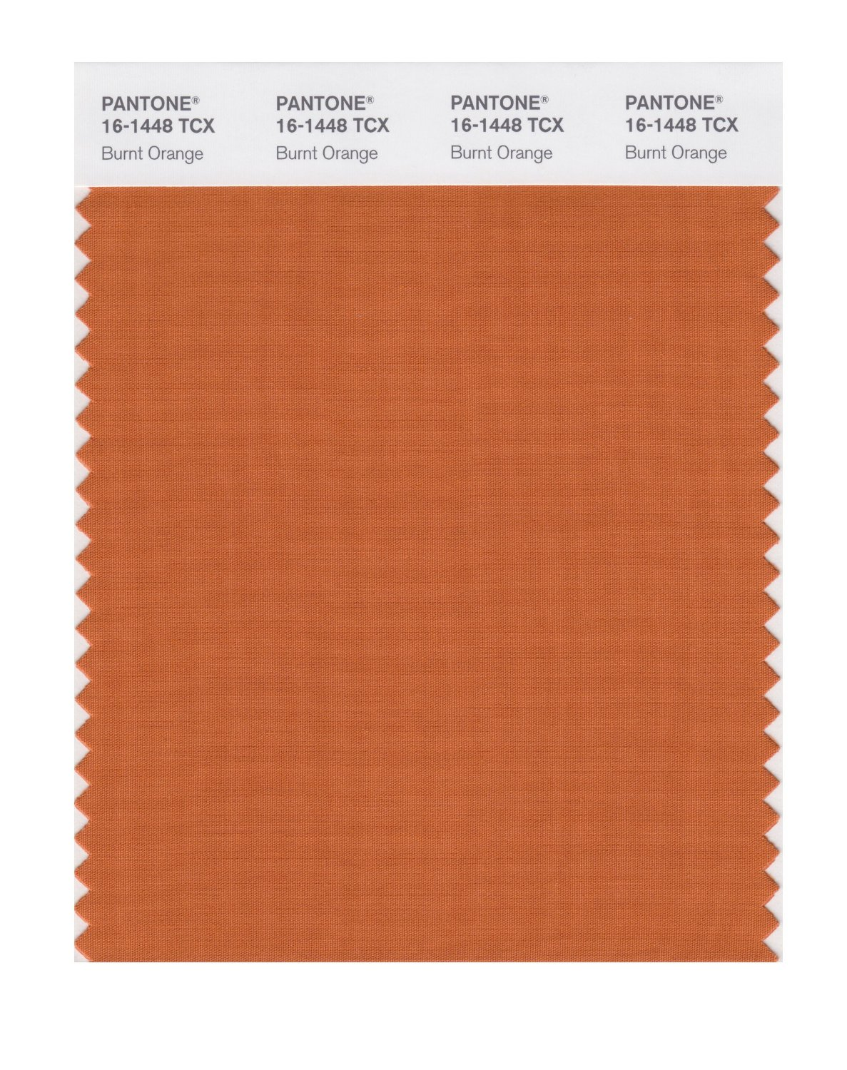 Pantone Smart Swatch 16-1448 Burnt Orange