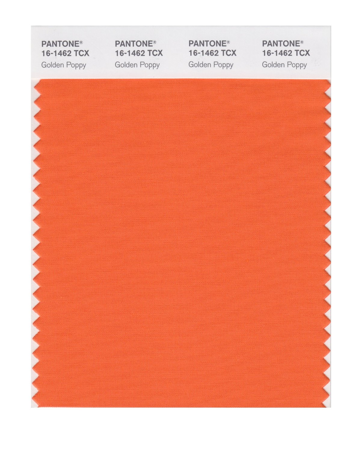 Pantone Smart Swatch 16-1462 Golden Poppy