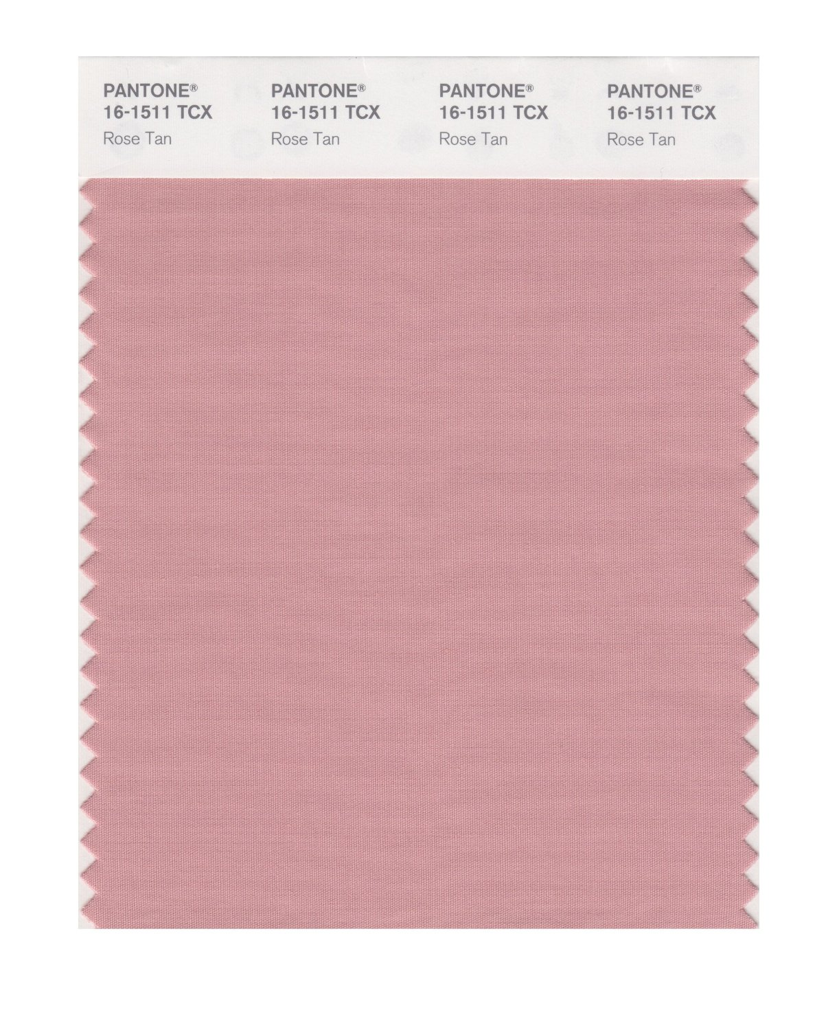 Pantone Smart Swatch 16-1511 Rose Tan