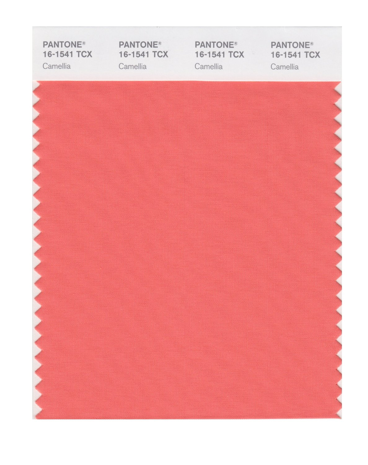 Buy pantone smart swatch 16 1541 camellia for Where to buy pantone paint