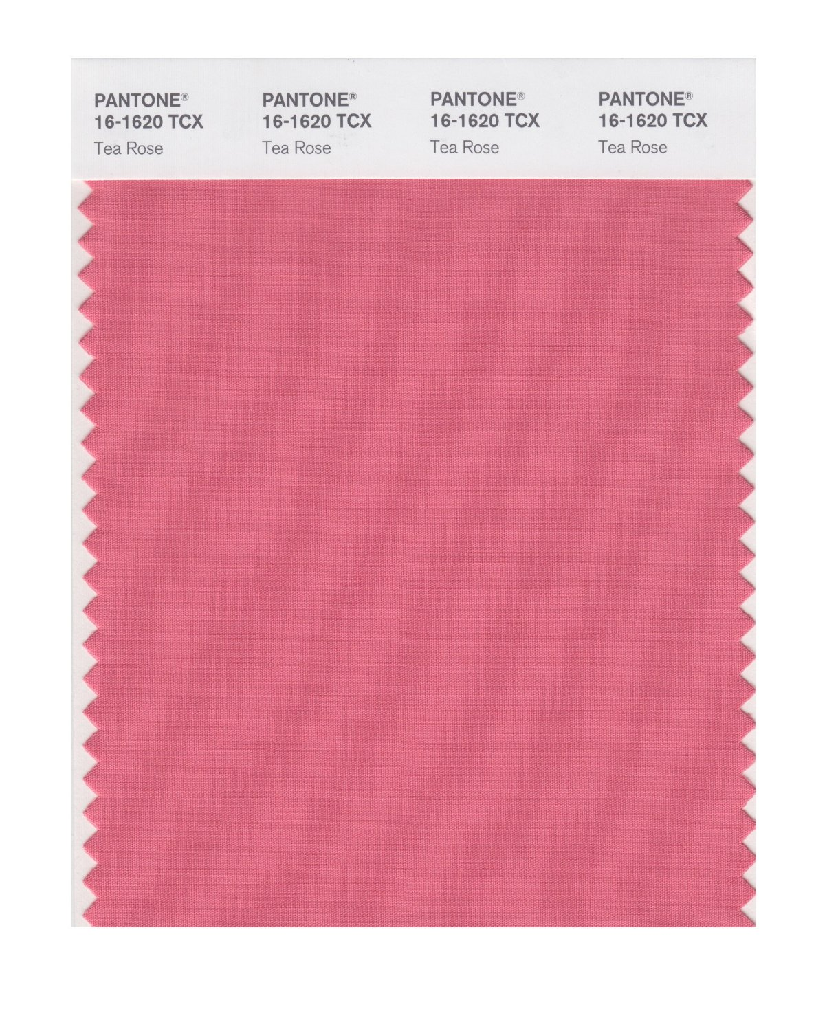 Pantone Smart Swatch 16-1620 Tea Rose