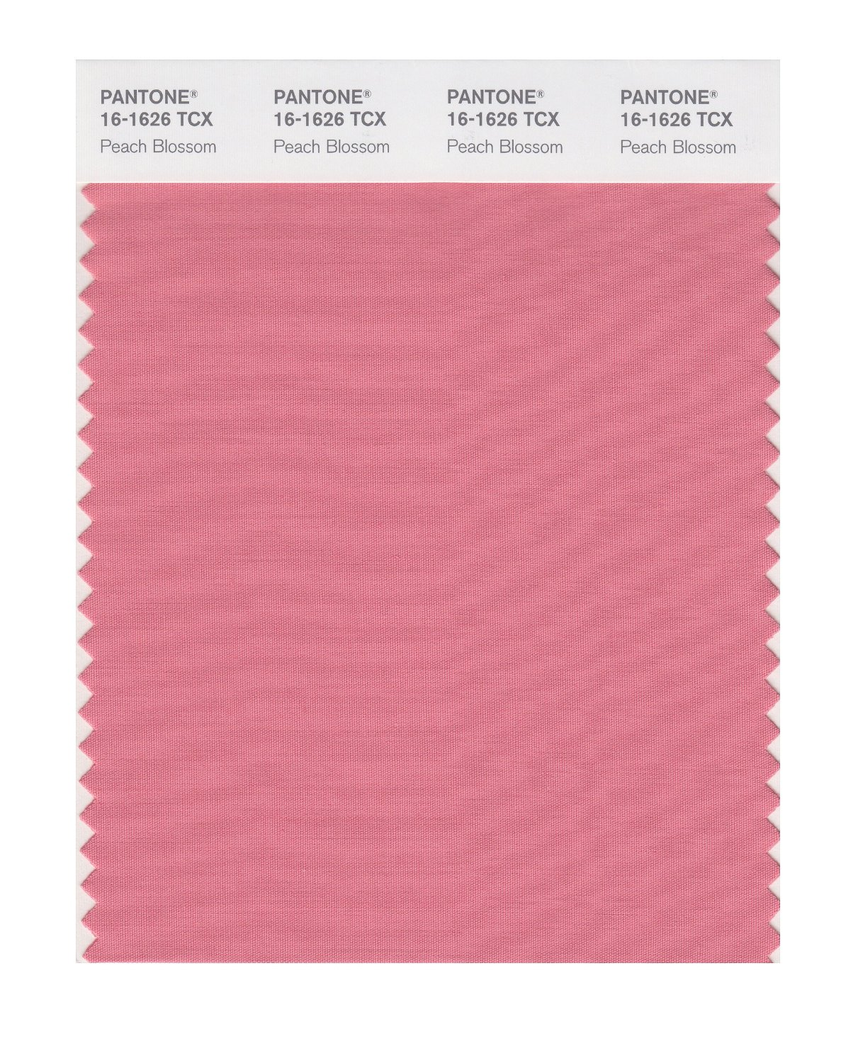 Pantone Smart Swatch 16-1626 Peach Blossom