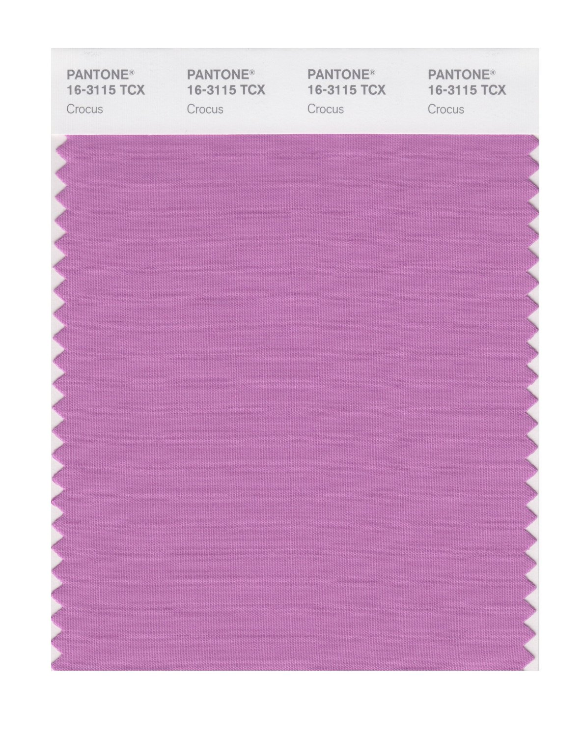 Pantone Smart Swatch 16-3115 Crocus