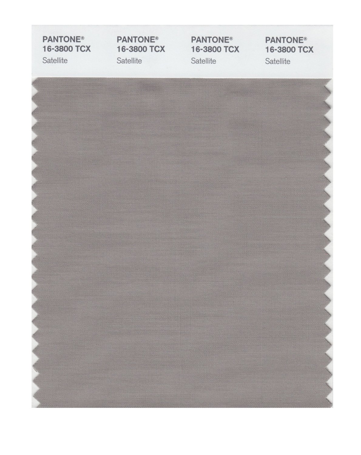 Pantone Smart Swatch 16-3800 Satellite