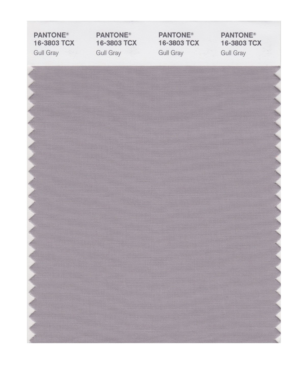 Pantone Smart Swatch 16-3803 Gull Gray