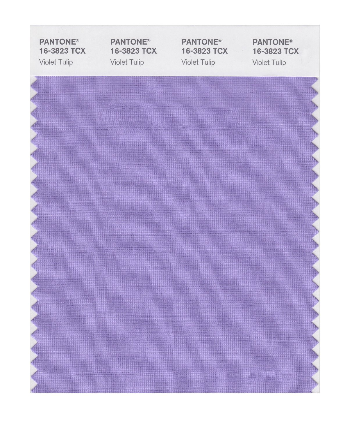 Buy pantone smart swatch 16 3823 violet tulip for Where to buy pantone paint