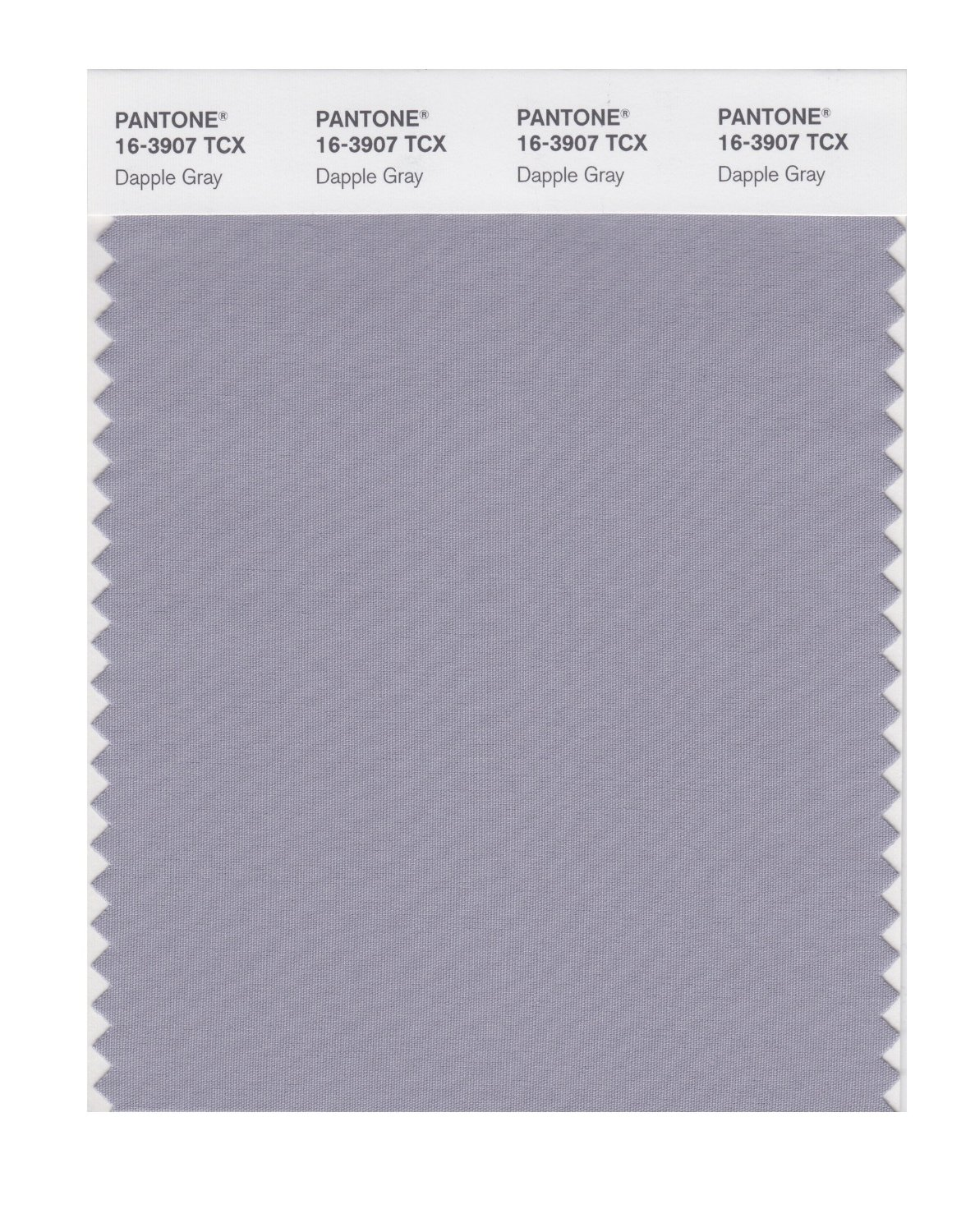 Pantone Smart Swatch 16-3907 Dapple Gray