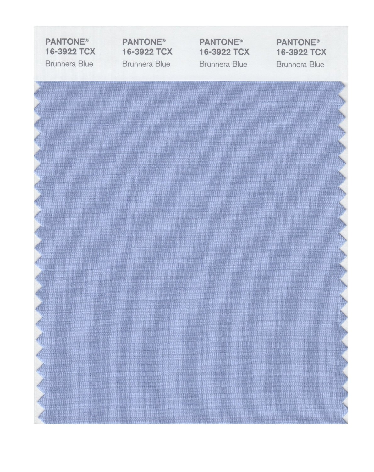 Pantone Smart Swatch 16-3922 Brunnera Blue