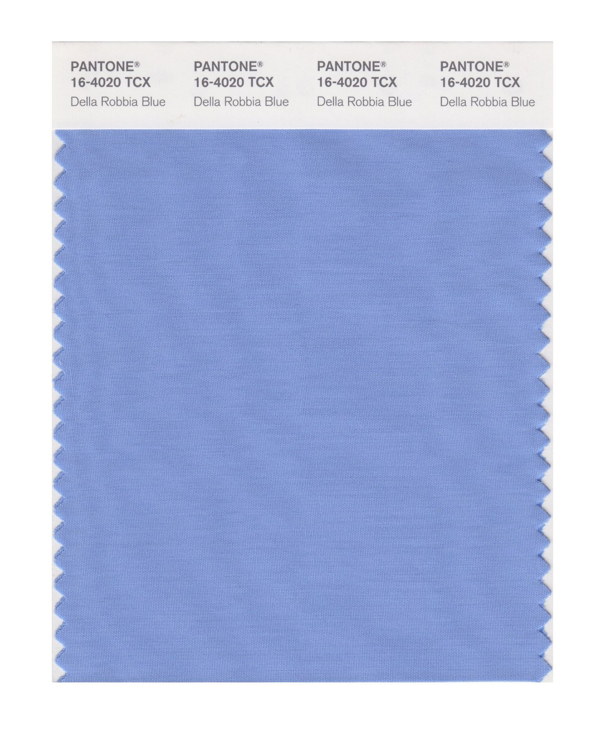 Pantone Smart Swatch 16-4020 Della Rob Blue