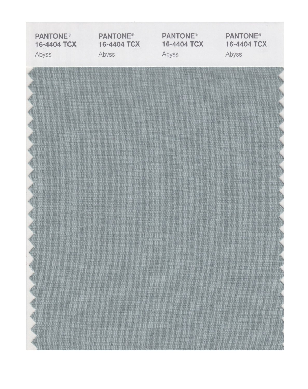 Pantone Smart Swatch 16-4404 Abyss