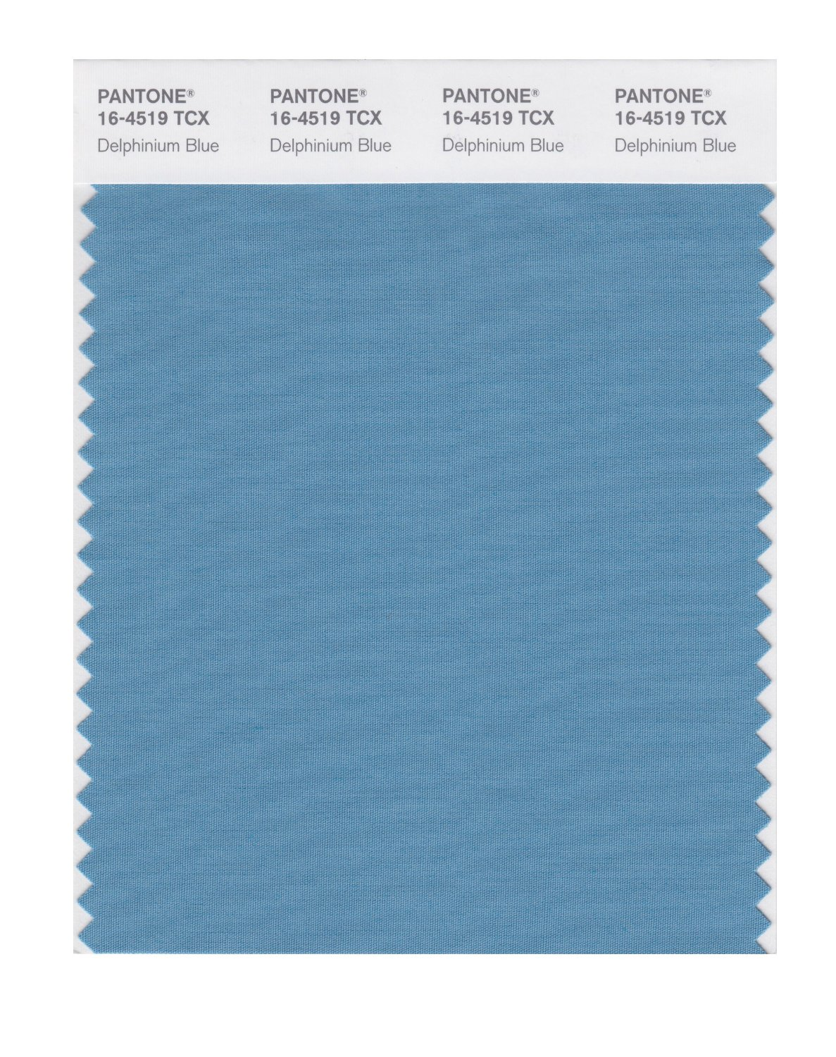 Pantone Smart Swatch 16-4519 Delphinium Blue