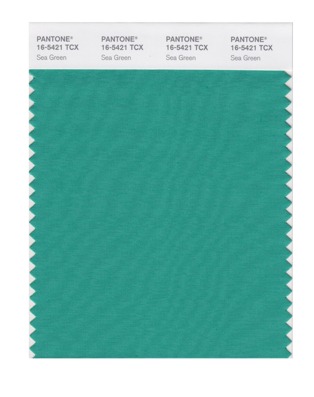 Pantone Smart Swatch 16-5421 Sea Green