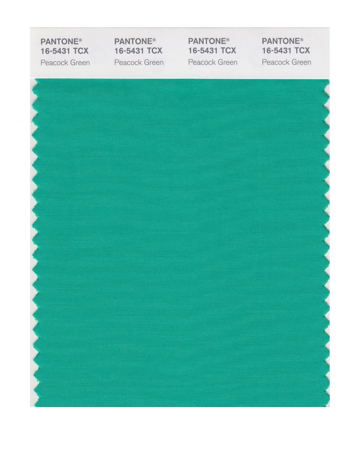 Pantone Smart Swatch 16-5431 Peacock Green