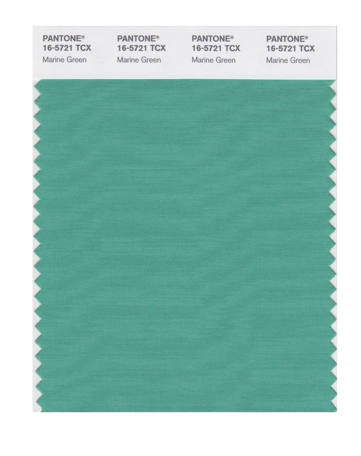 Pantone Smart Swatch 16-5721 Marine Green