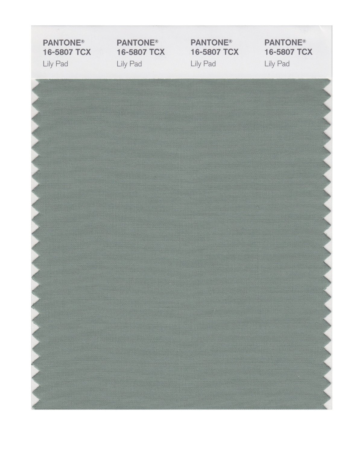 Pantone Smart Swatch 16-5807 Lily Pad