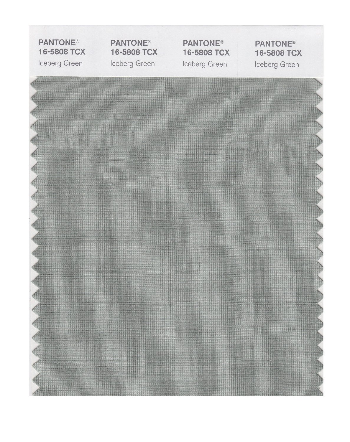 Pantone Smart Swatch 16-5808 Iceberg Green