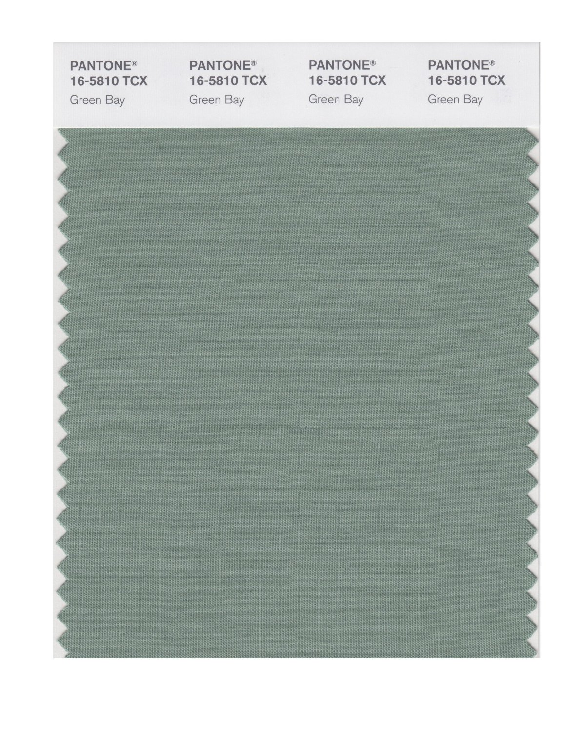 Pantone Smart Swatch 16-5810 Green Bay