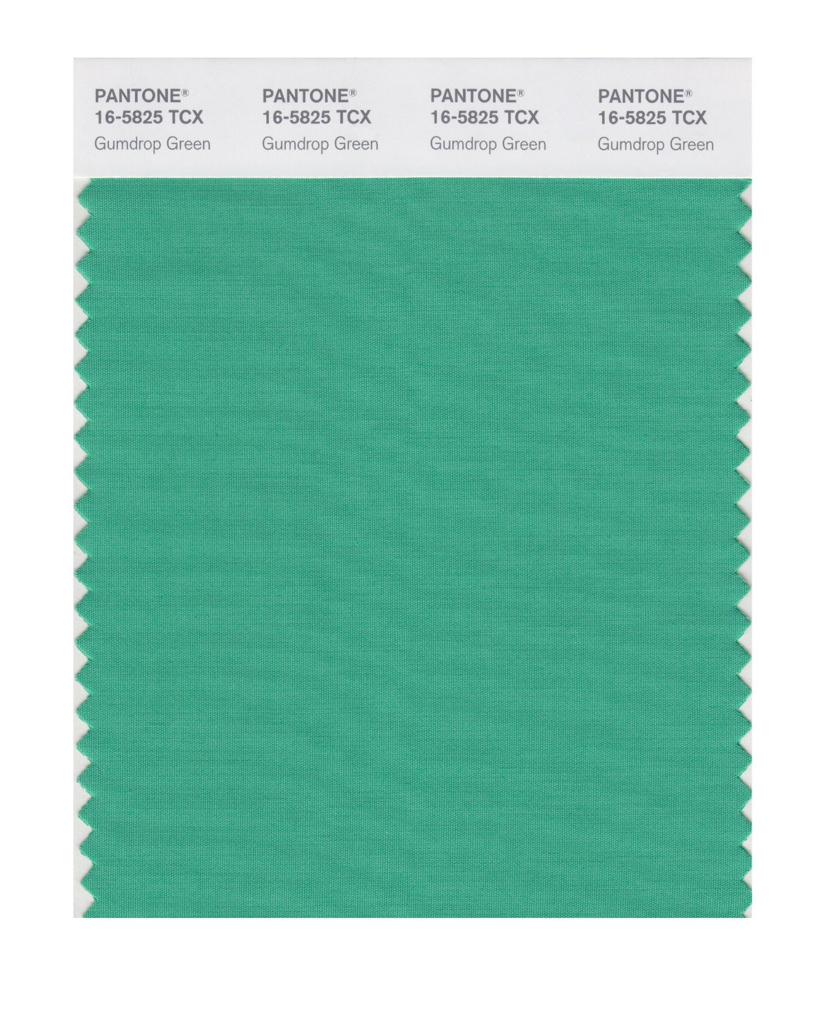 Pantone Smart Swatch 16-5825 Gumdrop Green