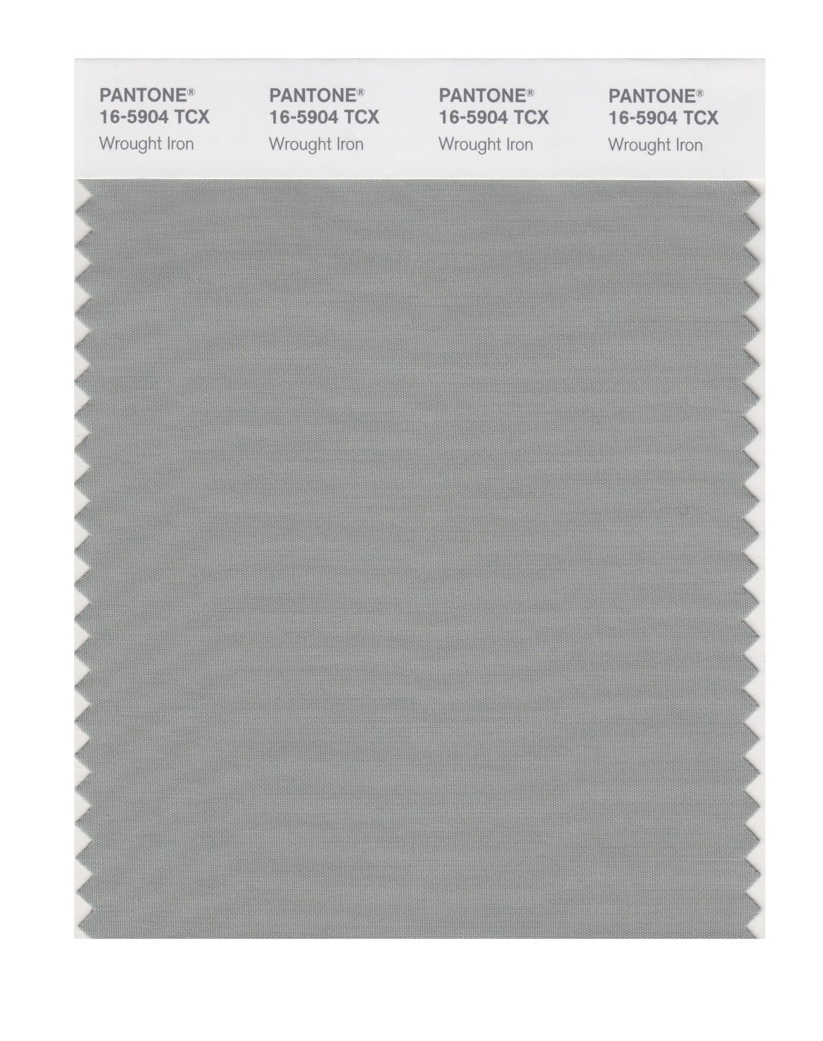 Pantone Smart Swatch 16-5904 Wrought Iron