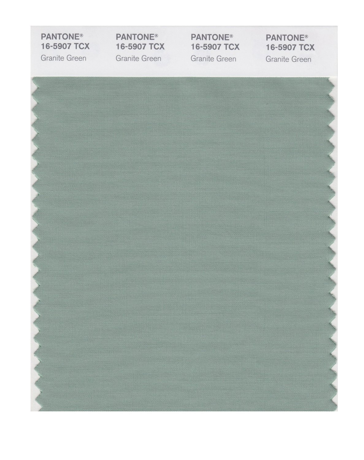 Pantone Smart Swatch 16-5907 Granite Green