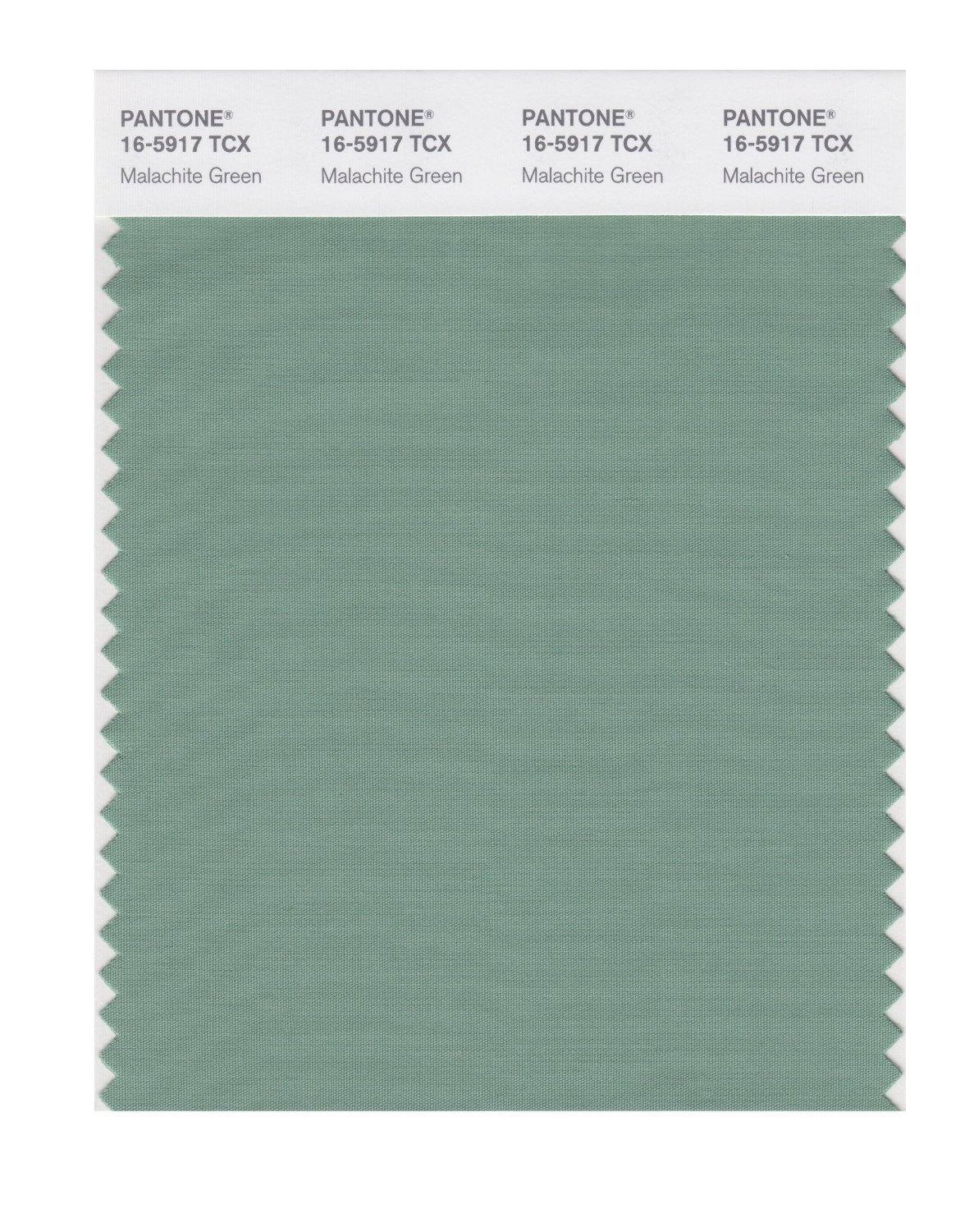 Pantone Smart Swatch 16-5917 Malachite Green