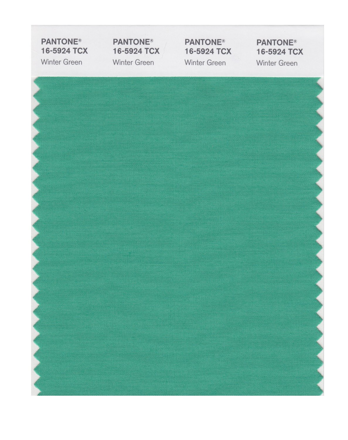 Pantone Smart Swatch 16-5924 Winter Green