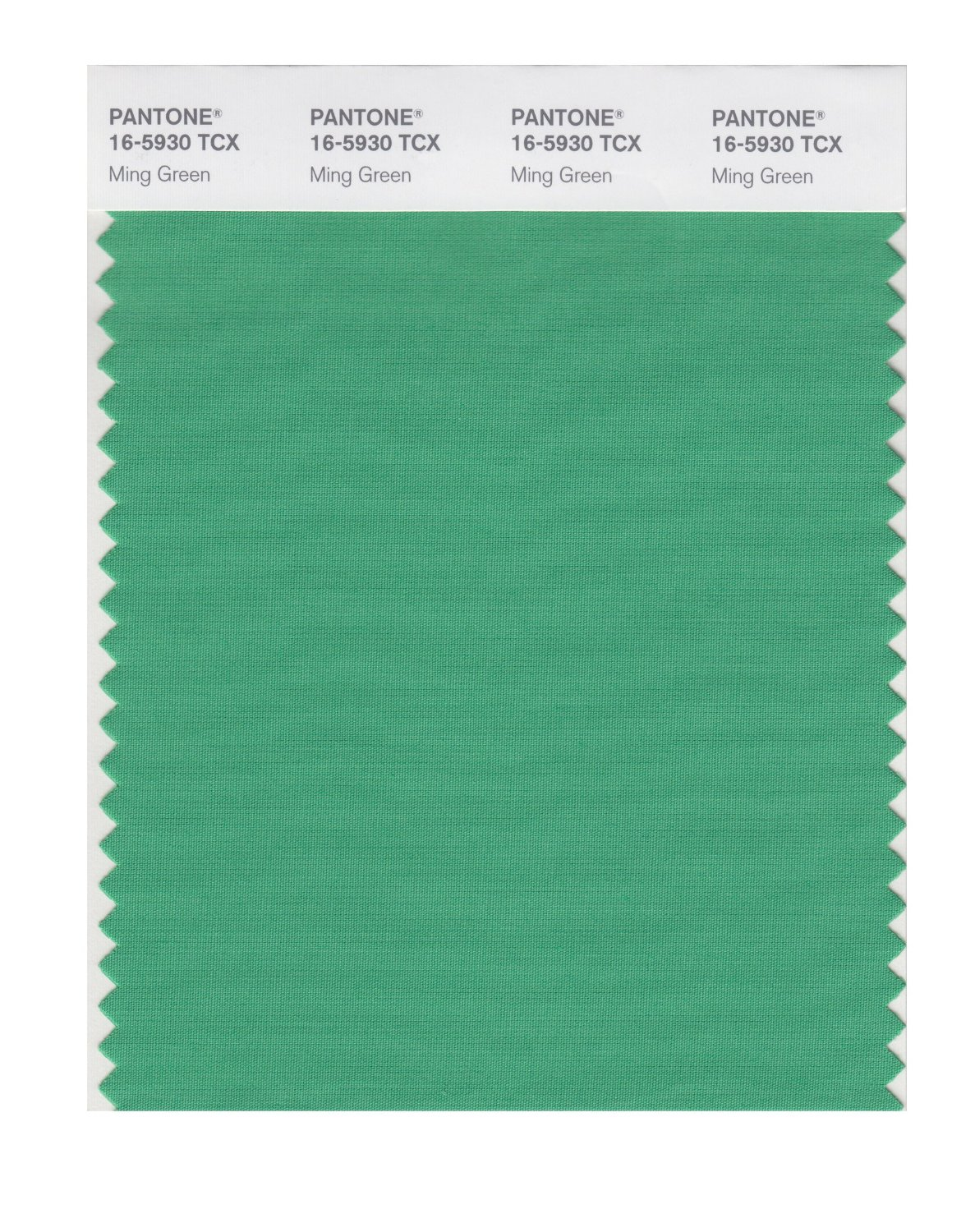 Pantone Smart Swatch 16-5930 Ming Green
