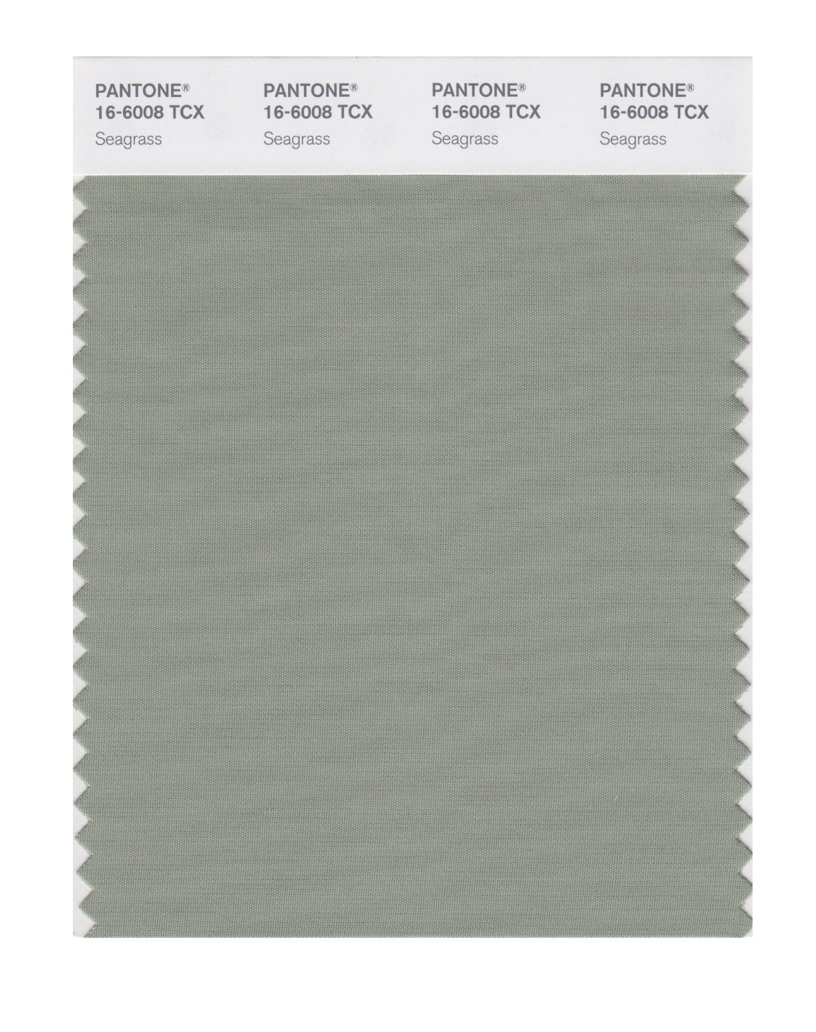 Pantone Smart Swatch 16-6008 Seagrass