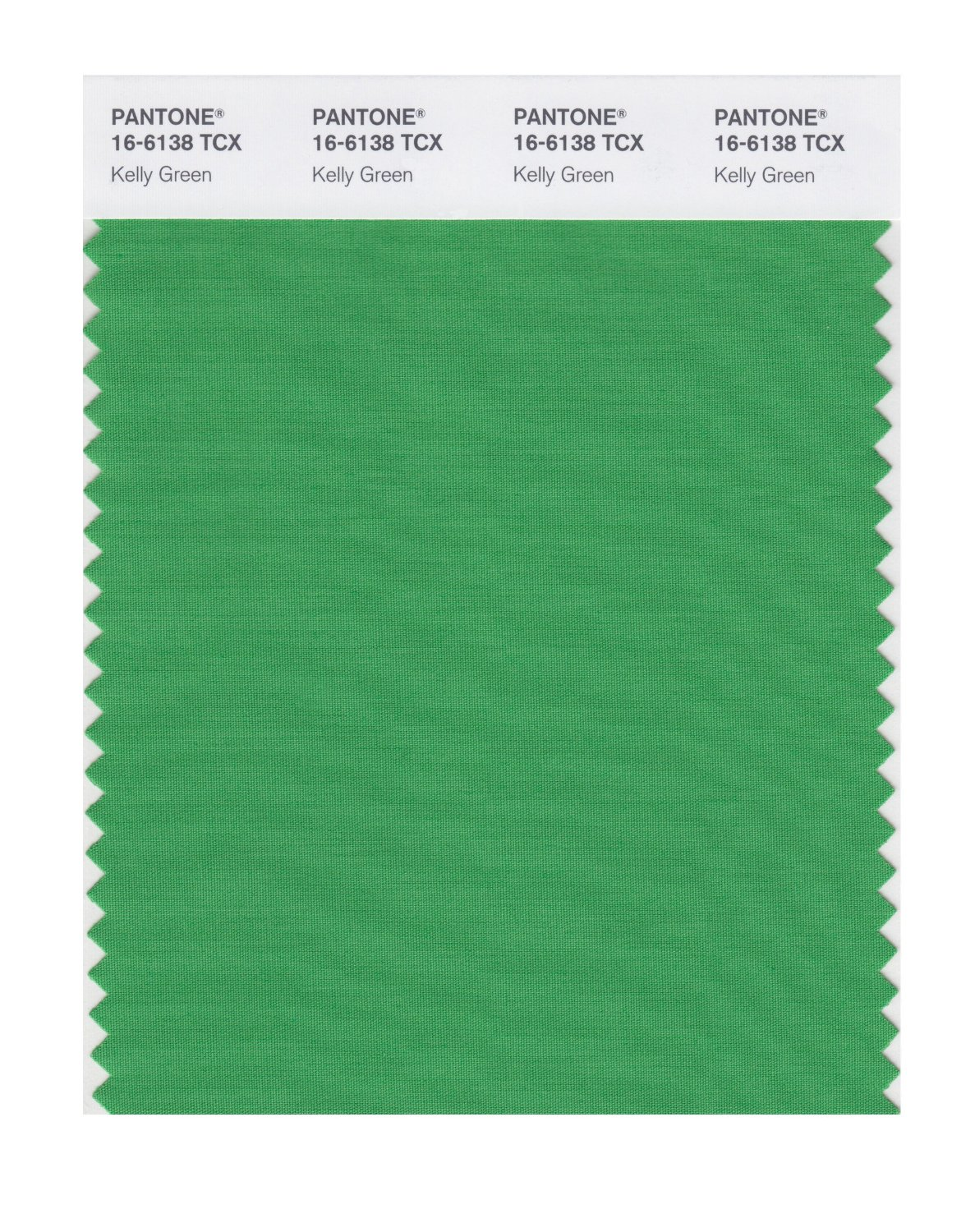 Pantone Smart Swatch 16-6138 Kelly Green