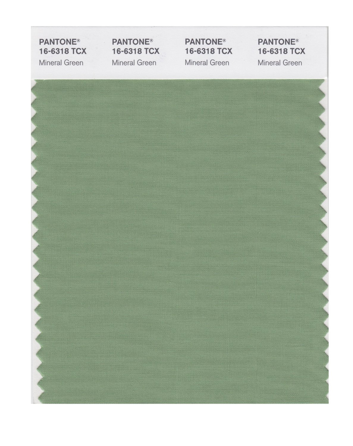 Pantone Smart Swatch 16-6318 Mineral Green