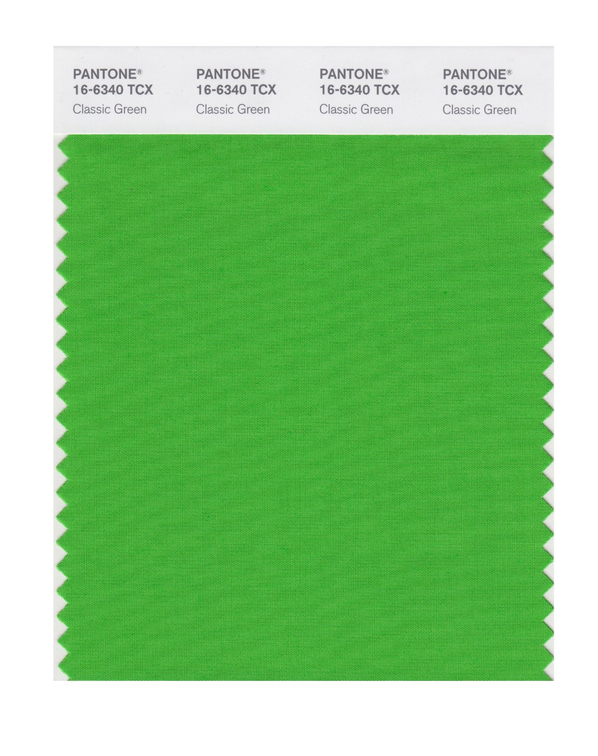 Buy pantone smart swatch 16 6340 classic green for Where to buy pantone paint
