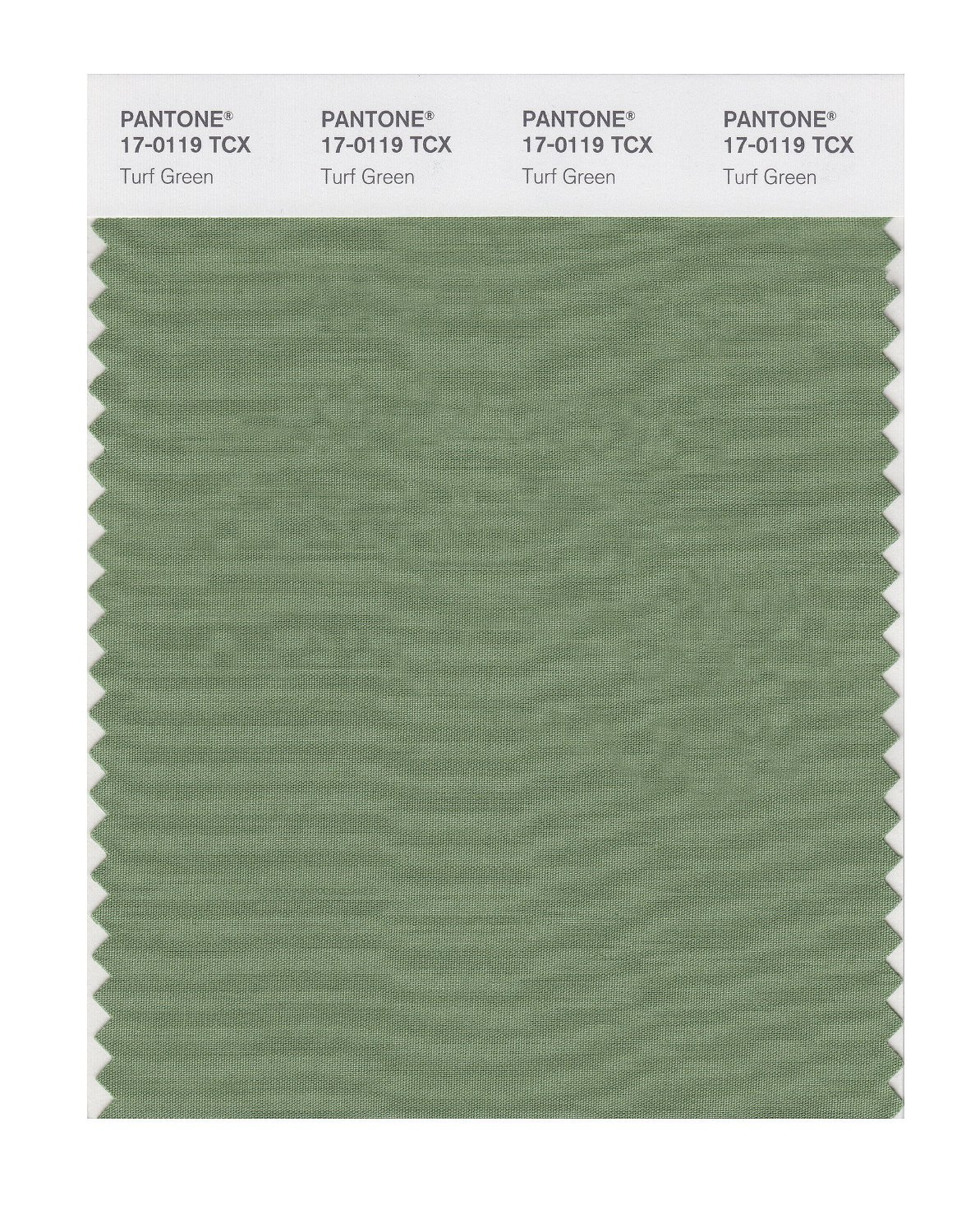 Pantone Smart Swatch 17-0119 Turf Green