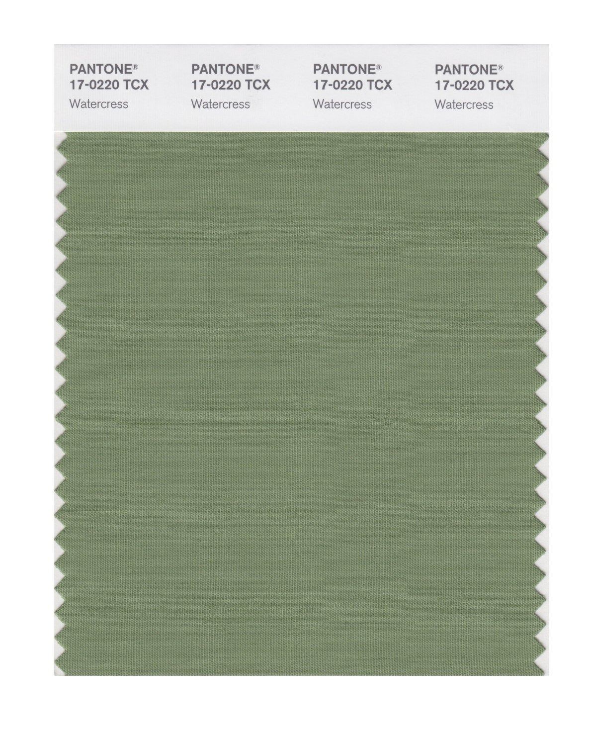 Pantone Smart Swatch 17-0220 Water Cress