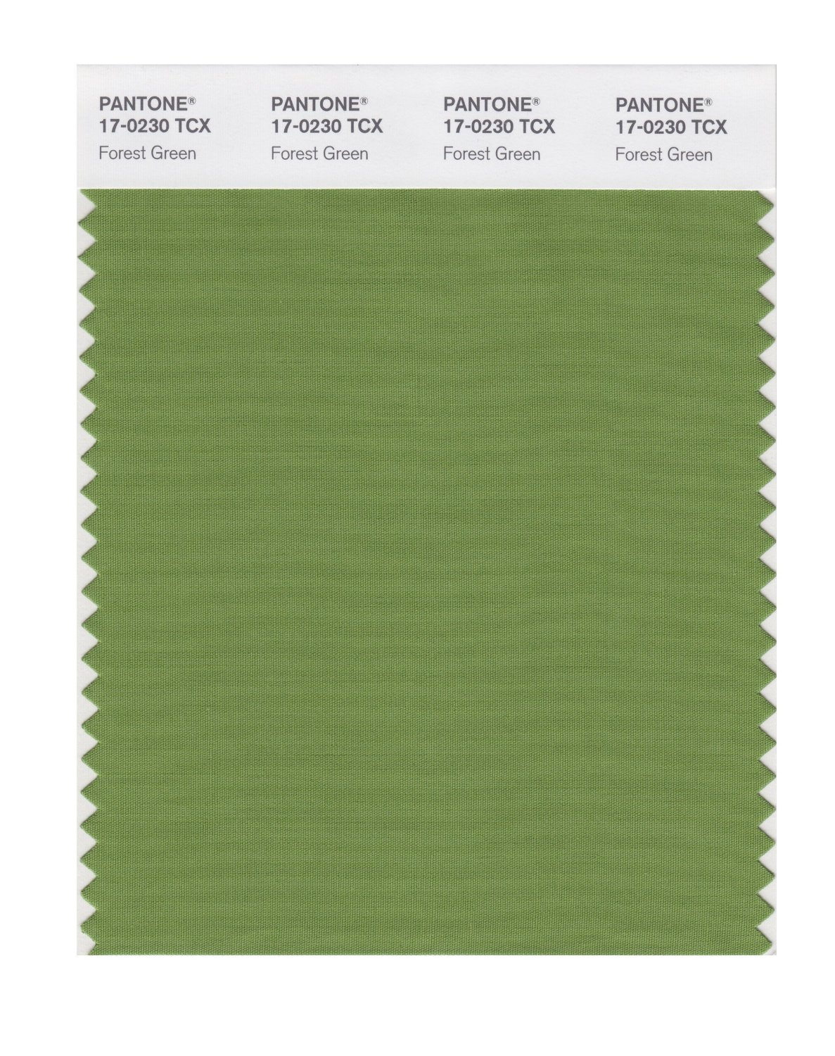 Pantone Smart Swatch 17-0230 Forest Green