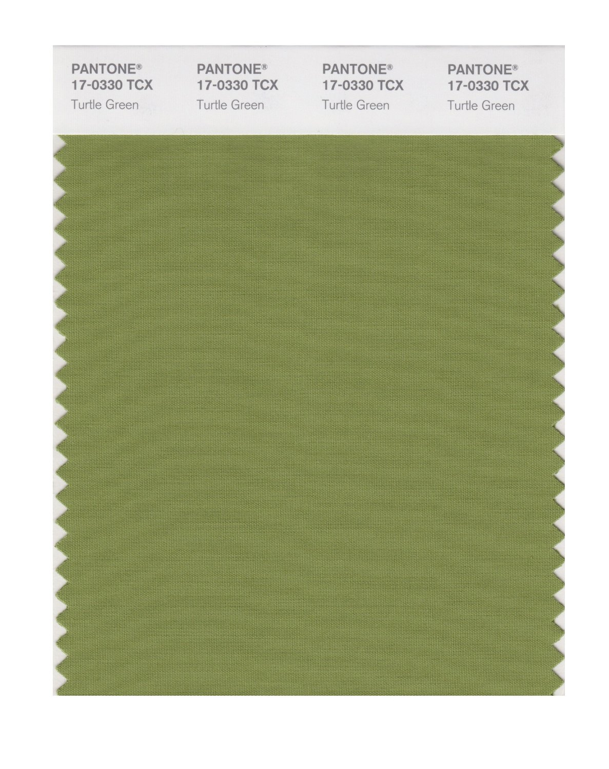 Pantone Smart Swatch 17-0330 Turtle Green
