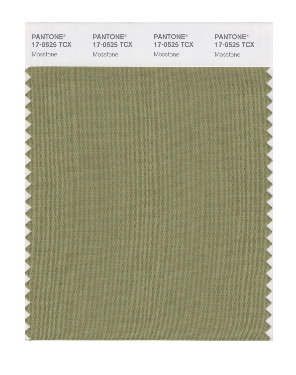 Pantone Smart Swatch 17-0525 Mosstone