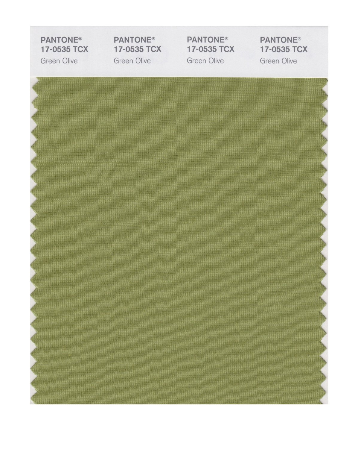 Pantone Smart Swatch 17-0535 Green Olive