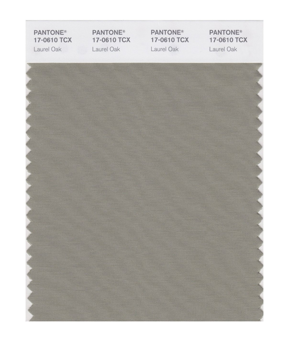 Pantone Smart Swatch 17-0610 Laurel Oak