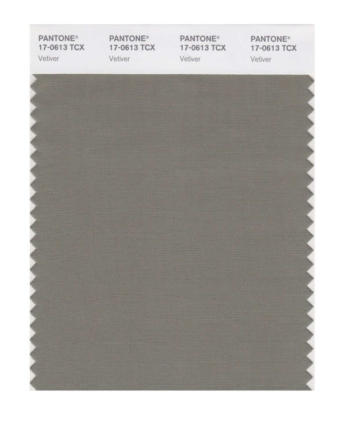 Pantone Smart Swatch 17-0613 Vetiver