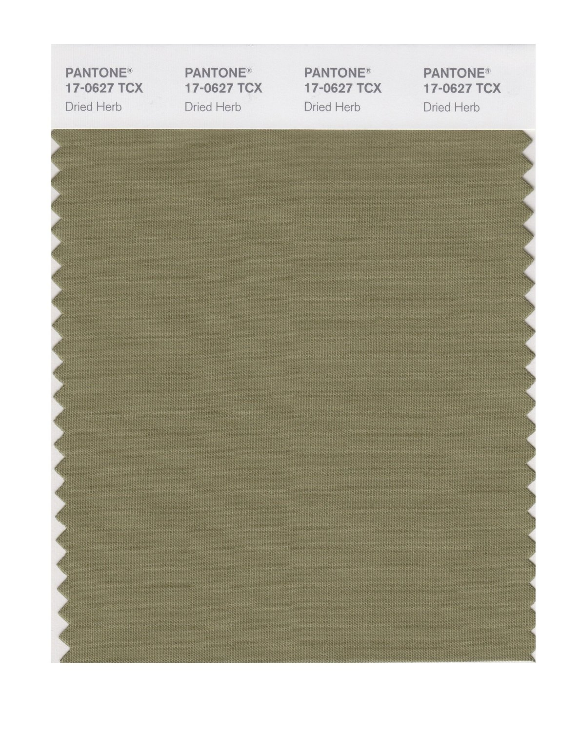 Pantone Smart Swatch 17-0627 Dried Herb