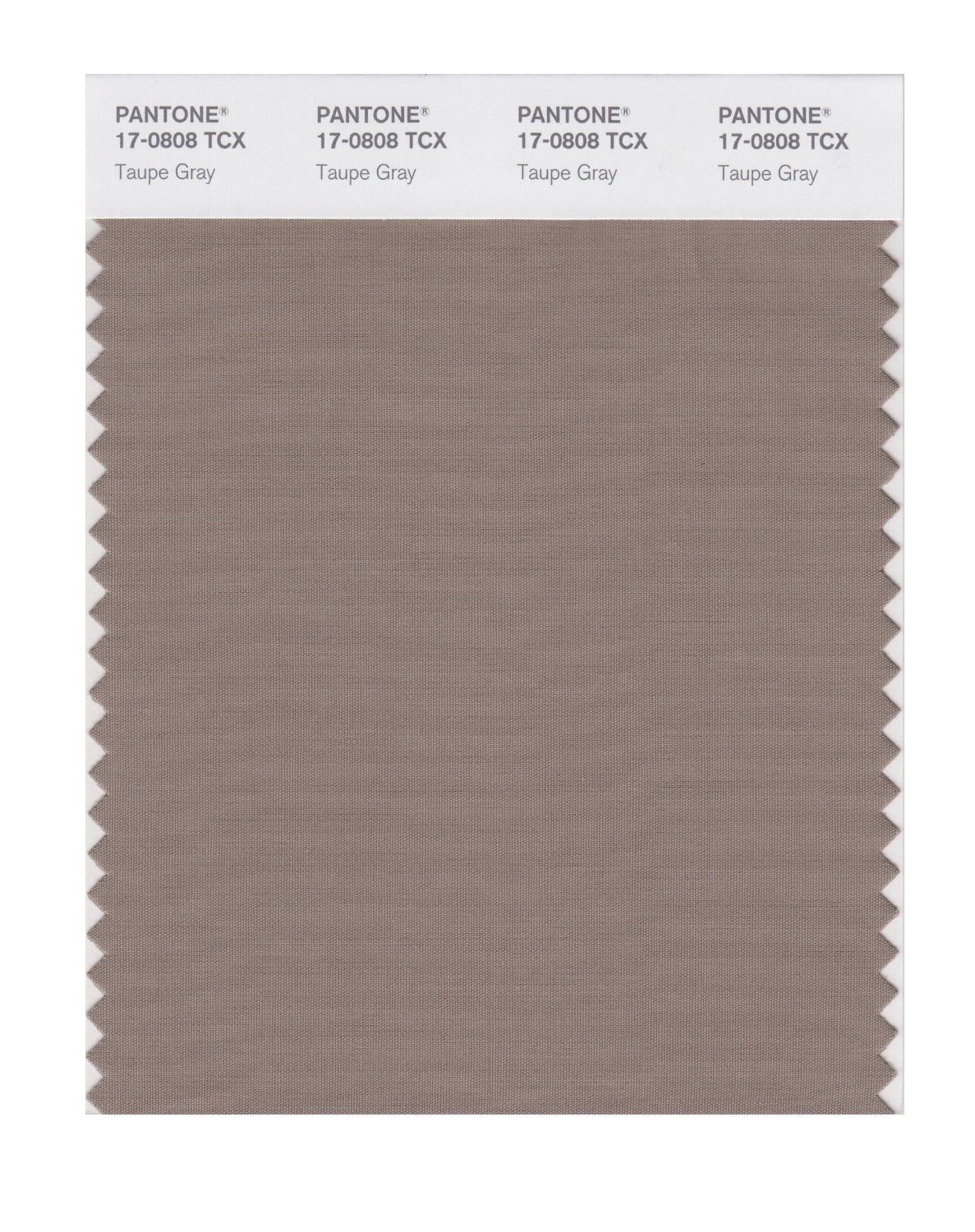 Pantone Smart Swatch 17-0808 Taupe Gray