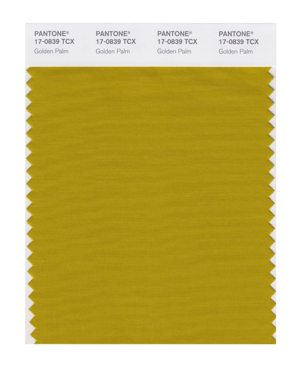 Pantone Smart Swatch 17-0839 Golden Palm