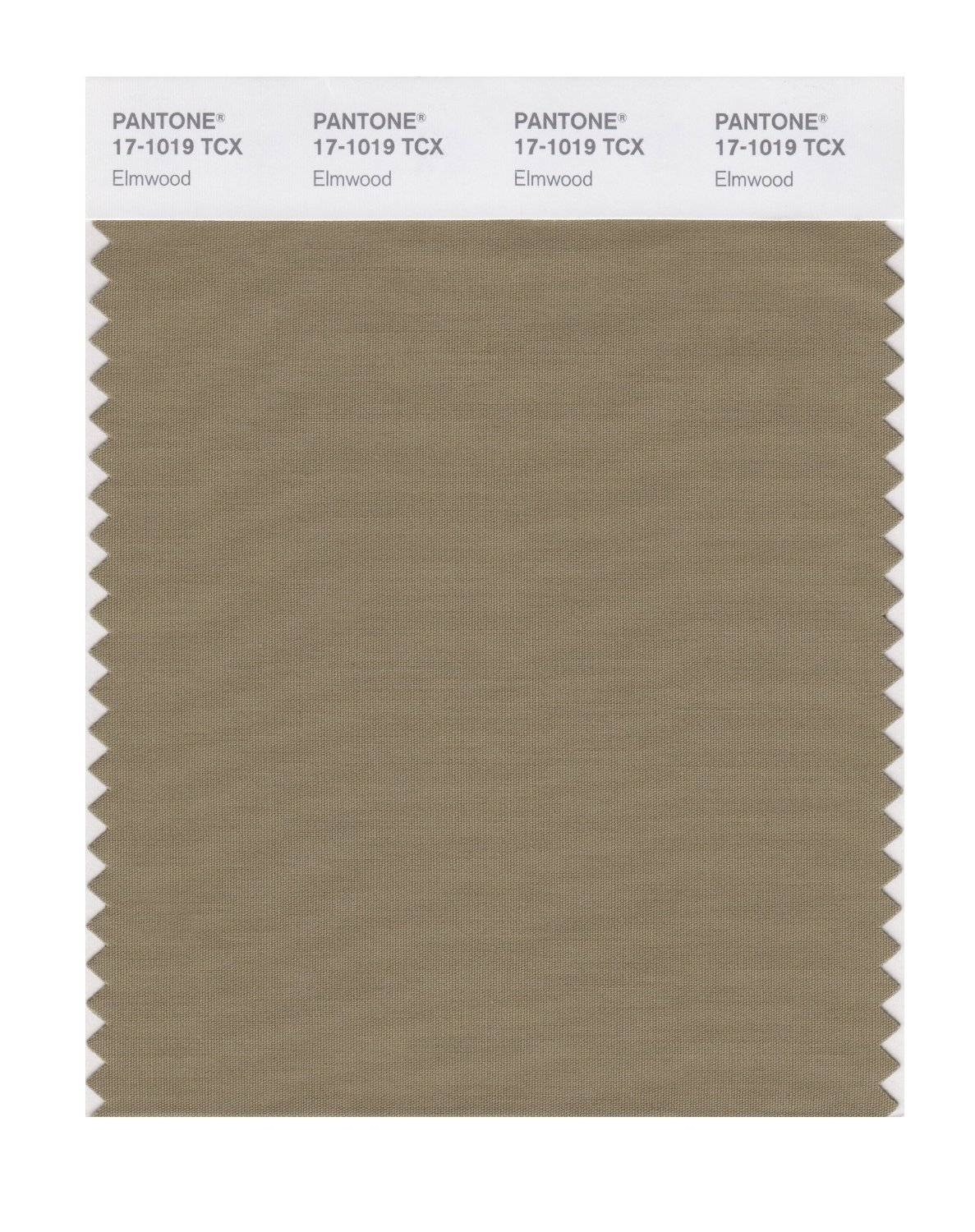 Pantone Smart Swatch 17-1019 Elmwood