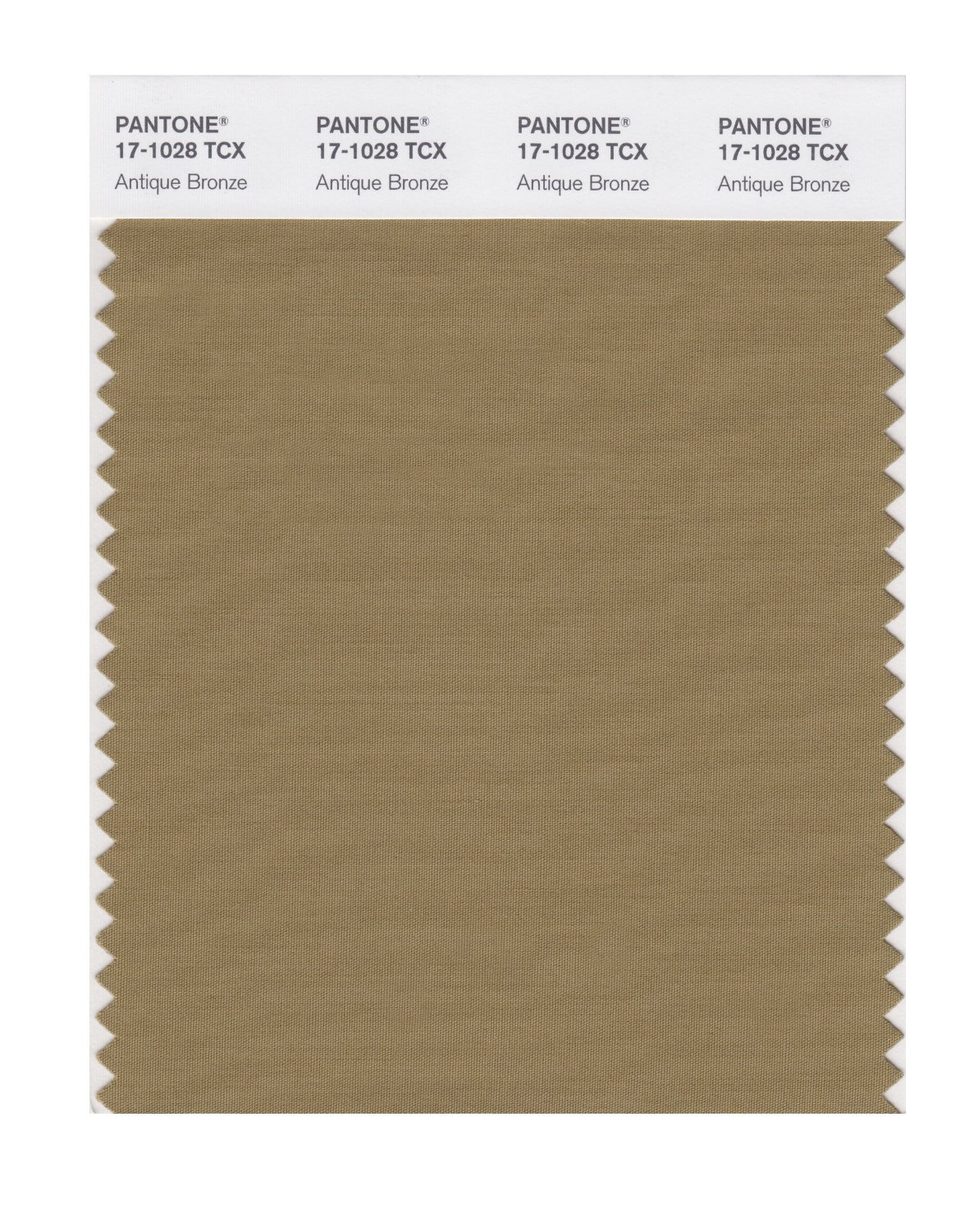 Pantone Smart Swatch 17-1028 Antique Bronze