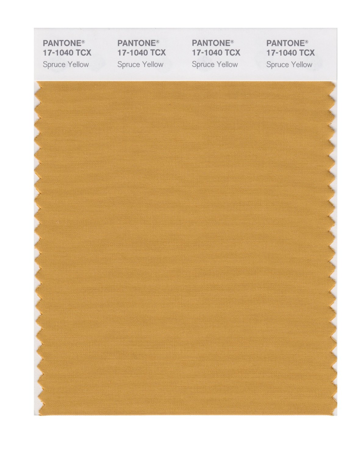 Pantone Smart Swatch 17-1040 Spruce Yellow