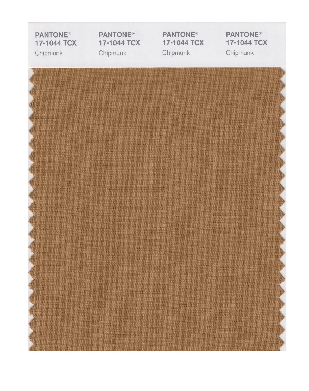 Pantone Smart Swatch 17-1044 Chipmunk