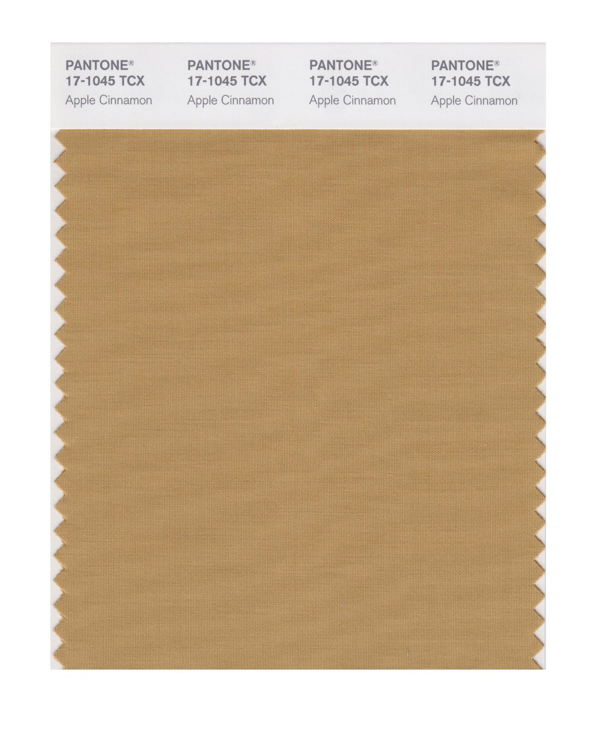 Pantone Smart Swatch 17-1045 Apple Cinnamon