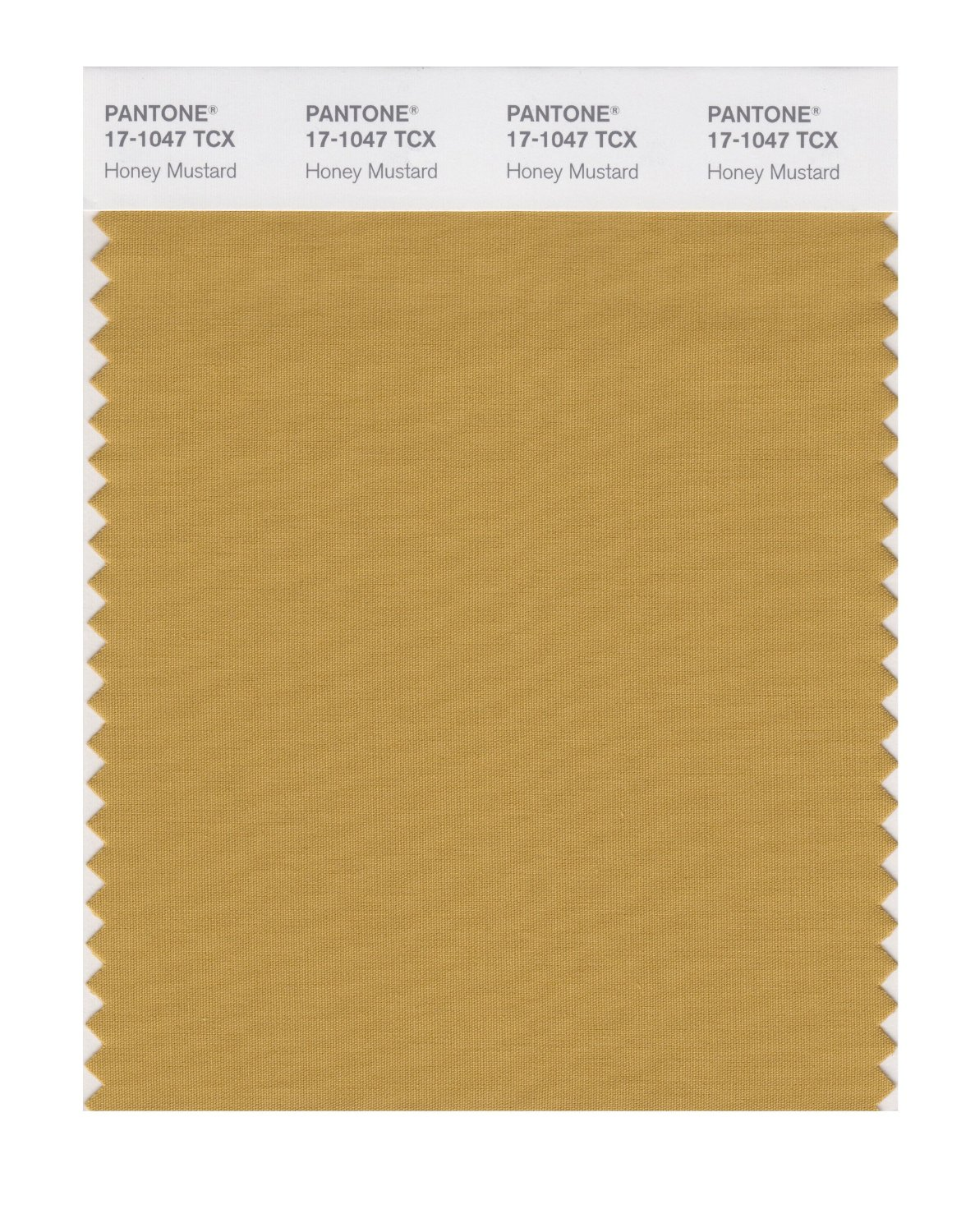 Pantone Smart Swatch 17-1047 Honey Mustard