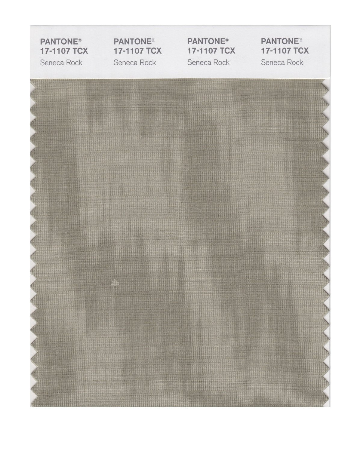 Pantone Smart Swatch 17-1107 Seneca Rock