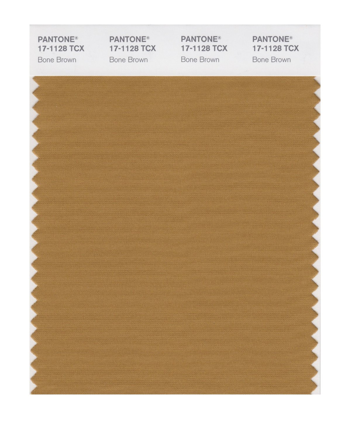 Pantone Smart Swatch 17-1128 Bone Brown